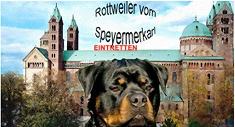 http://www.rottweiler-vomspeyermerkarl.de/