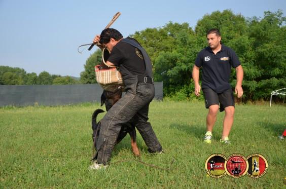 """Centro Cinofilo/Cinotecnico """"La Tana dei Lupi – aus der Krummholz"""" Allevamento( Rottweiler Malinois) Addestramento Pensione cani Torino Piemonte Centro Cinofilo Professionale riconosciuto E.N.C.I. / F.C.I."""