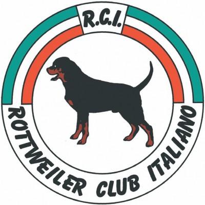 Standard Rottweiler Allevamento aus der Krummholz Rottweiler Club Italiano