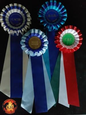 MIGLIORE ALLEVAMENTO ROTTWEILER TORINO PIEMONTE-AUS DER KRUMMHOLZ Rottweiler Esposizione Migliore di Razza in Ring d'Onore